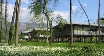 patriarche co a f t ses 50 ans d architecture durable construction cayola. Black Bedroom Furniture Sets. Home Design Ideas